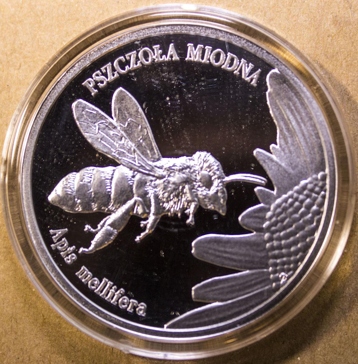 20 Zlotch Honey Bee Reverse