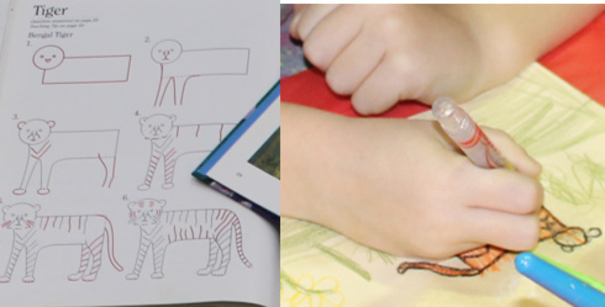 Using Draw Write Now Book 7's step-by-step instructions to draw a tiger
