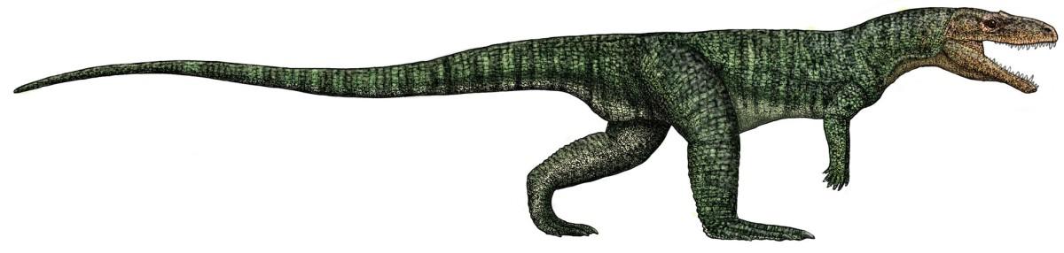 the-poposaurus-the-strange-dinosaur-like-creature-of-the-triassic