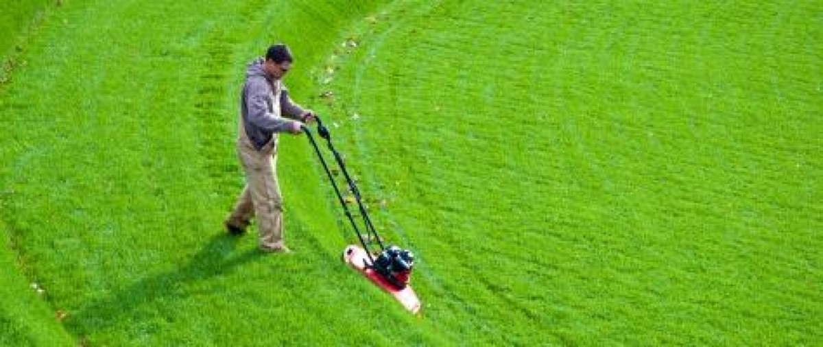 the-centrist-a-groundskeeper-for-the-forgotten-middle