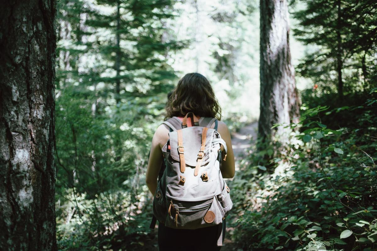 How to Avoid Dehydration: Lost in the Wilderness