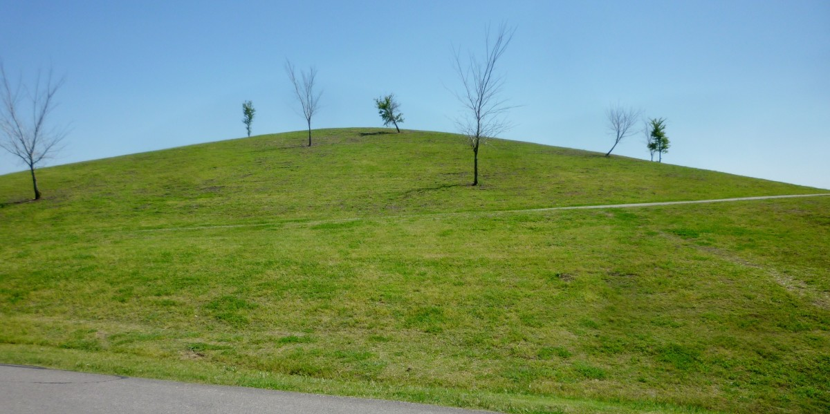 The large hill in the park
