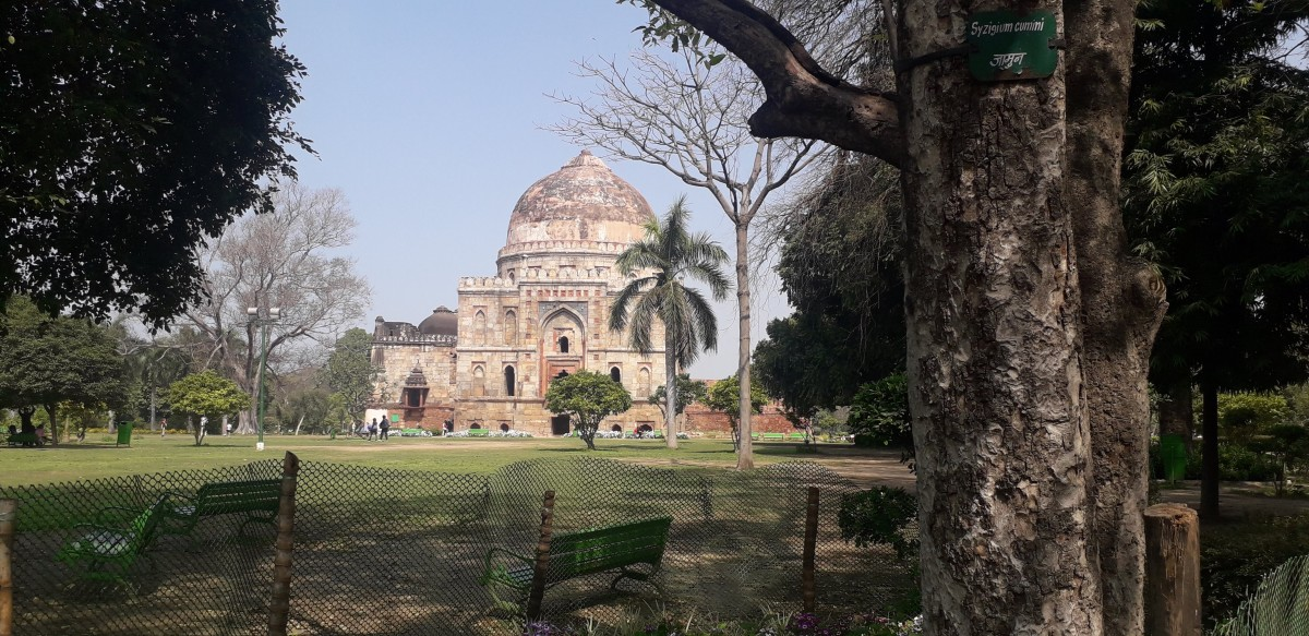 The Heritage—The Tombs of the Lodhi Garden