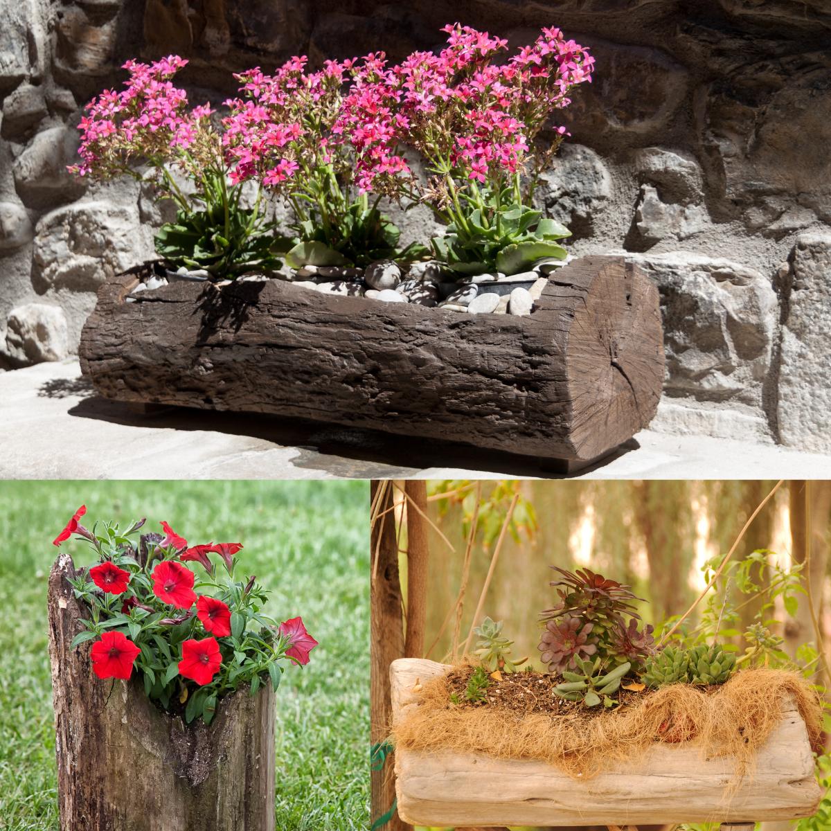 beautiful-yet-unusual-planters