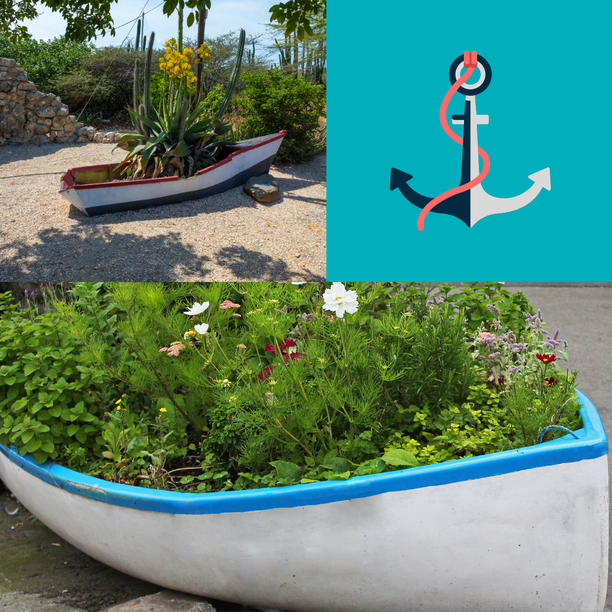 beautiful-yet-unusual-planters