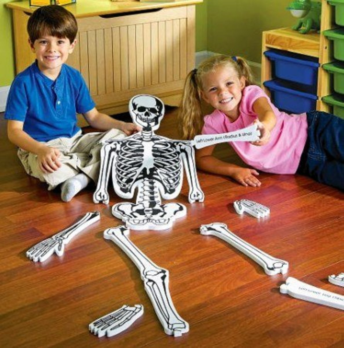 Playing with the Foam Skeleton Puzzle