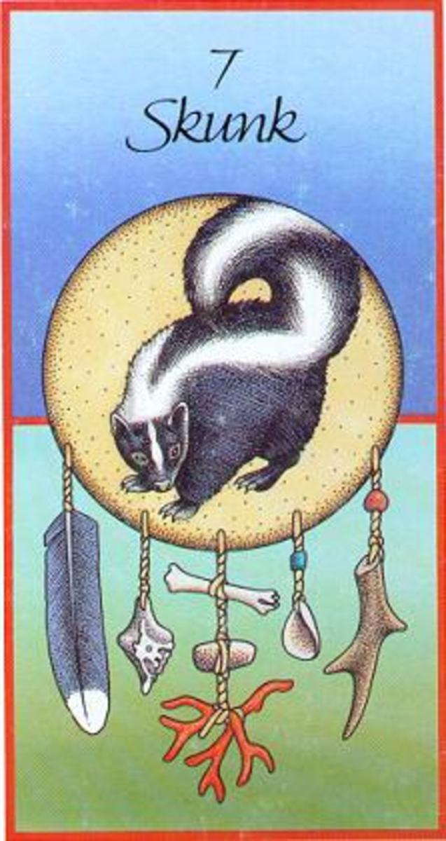 Meaning of Native American  animal medicine cards 04