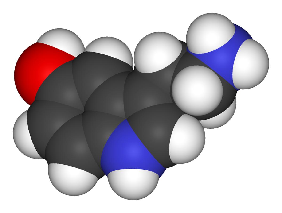 Image Credit: The Wikipedia Molecular formula: C10H12N2O