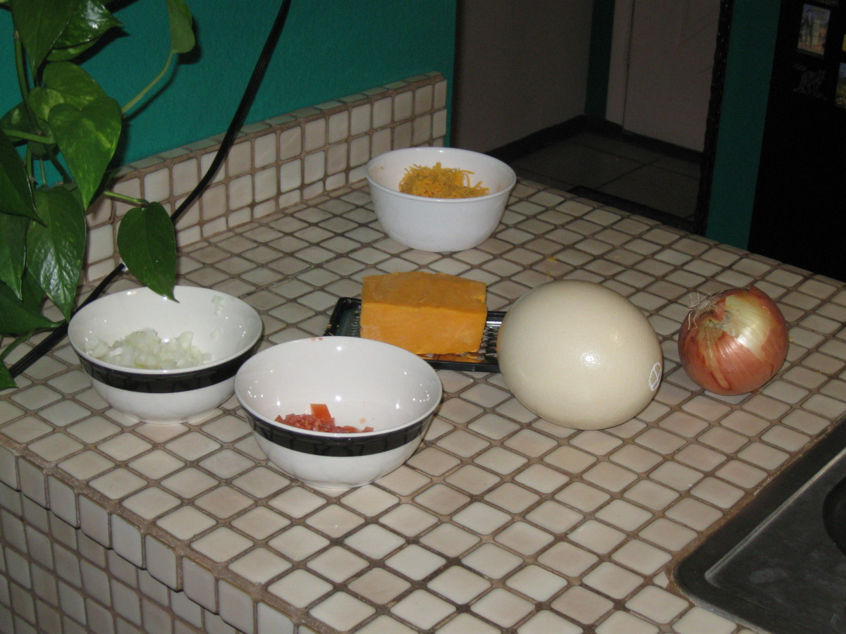 Ostrich egg and other ingredients for our omelet.