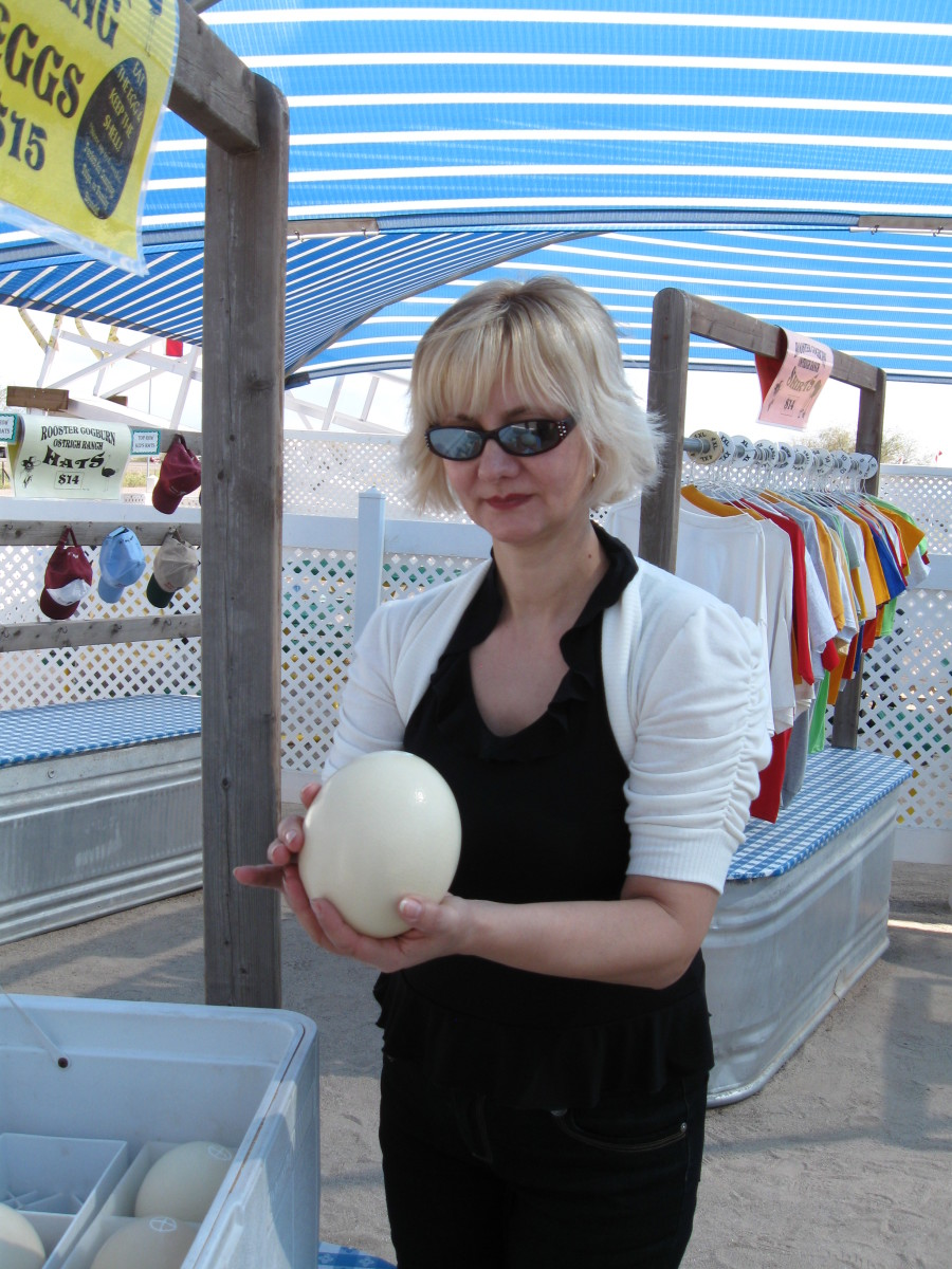 My wife selects an Ostrich egg