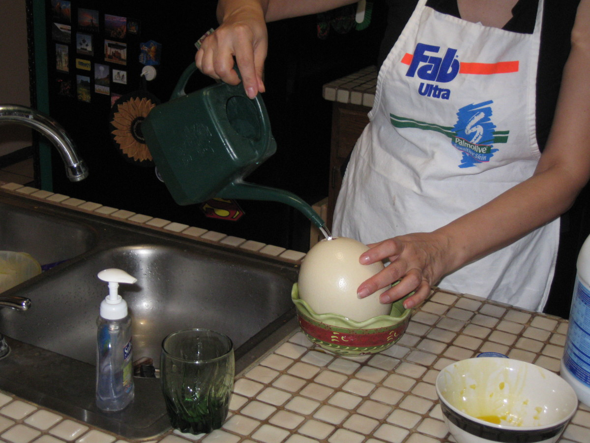 My wife finds that the watering can for her house plants provides an easy way to pour the water and bleach mixture into the hole in the ostrich egg.