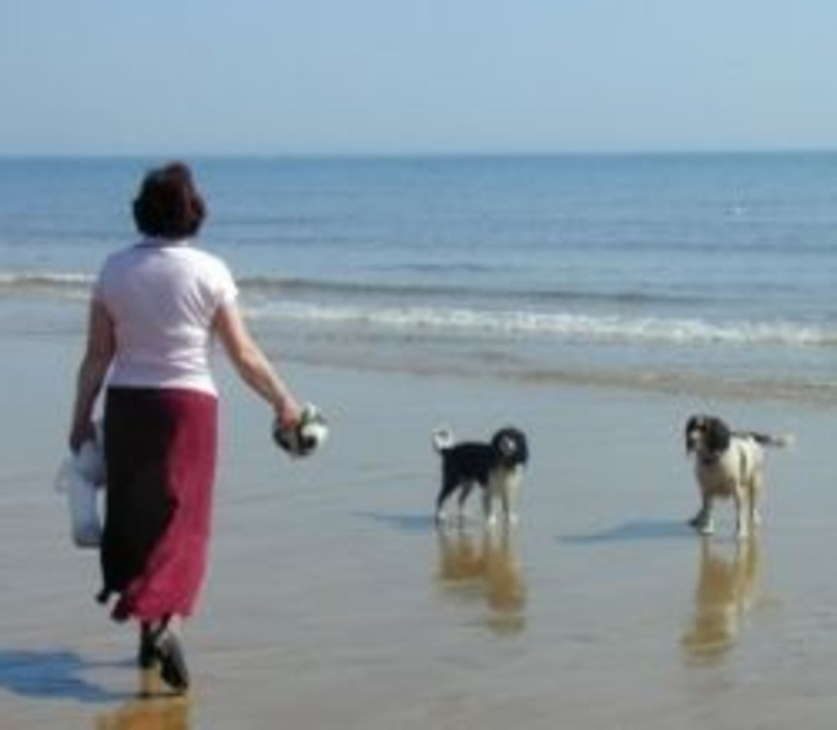 Picture of me with my back to the camera taken on Bournemouth beach with my dogs in about 2004.