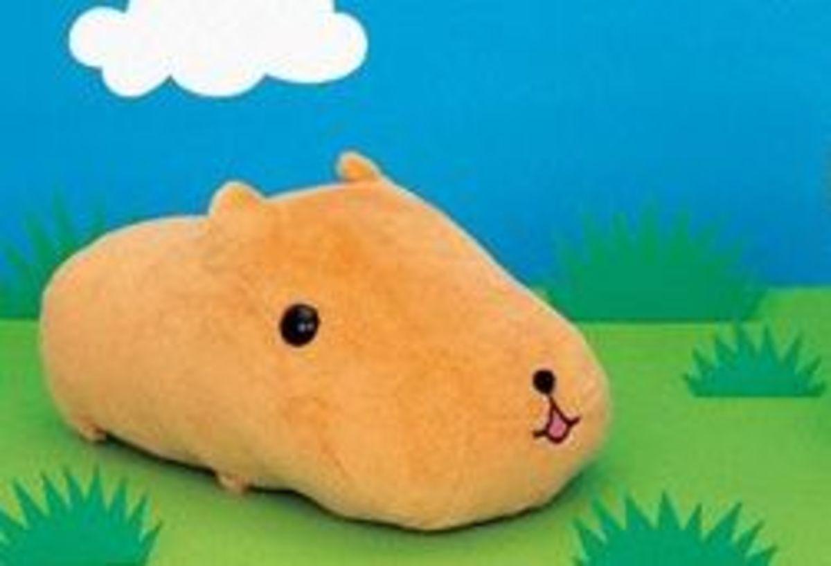 Capybara-san!