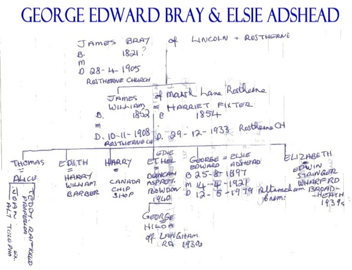 Family tree written by Agnes Bray.