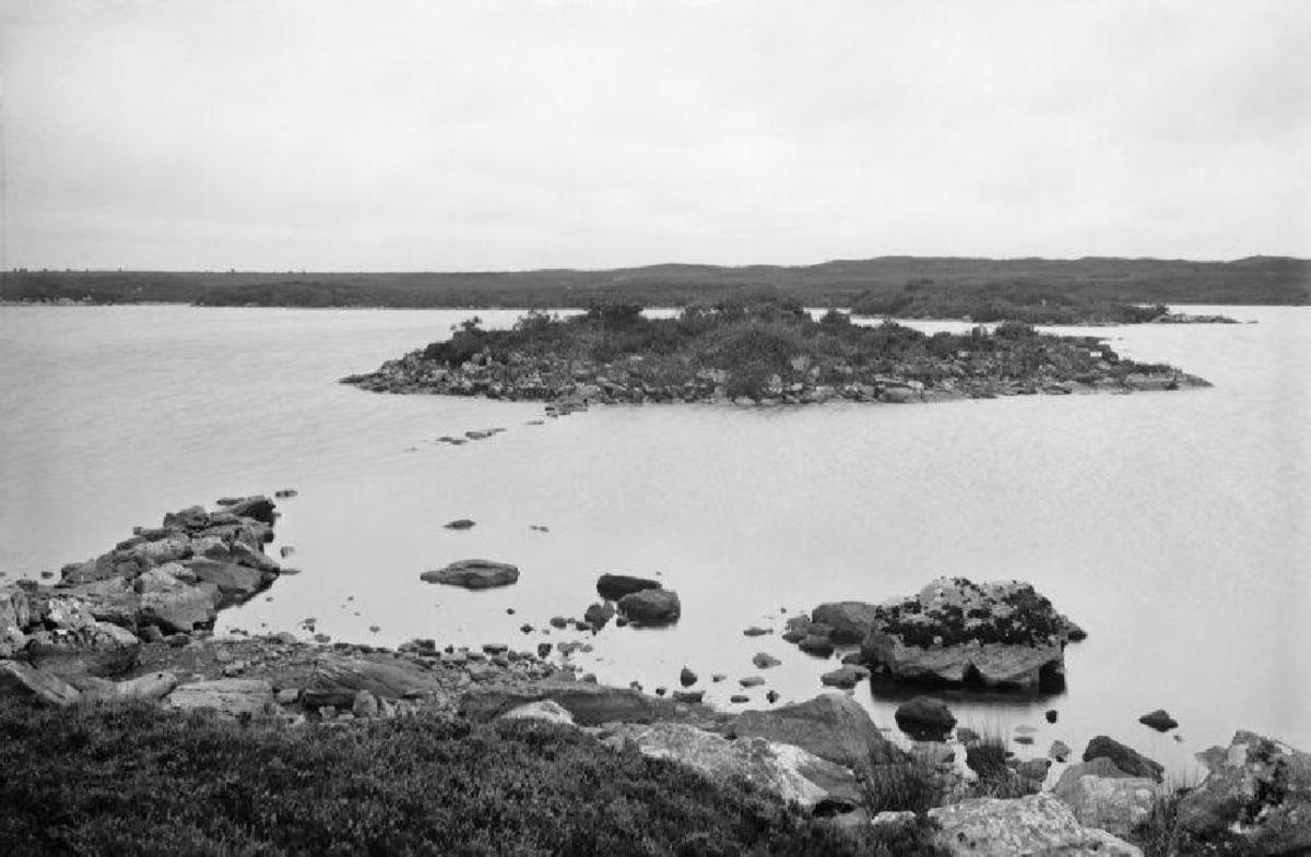 Remains of a crannog on a Loch, COLL, about 1905