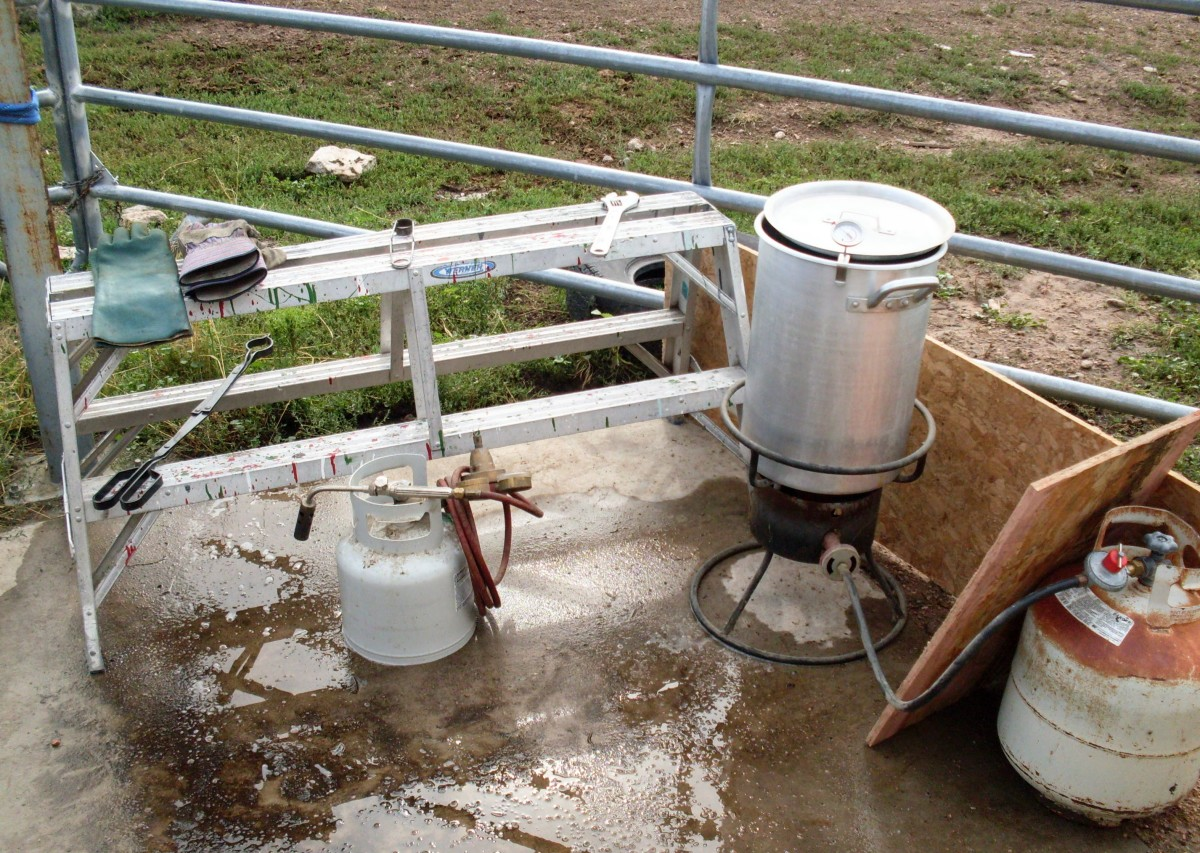 If you can keep it hot enough (wind is a problem here), a turkey fryer makes a handy scalding pot.