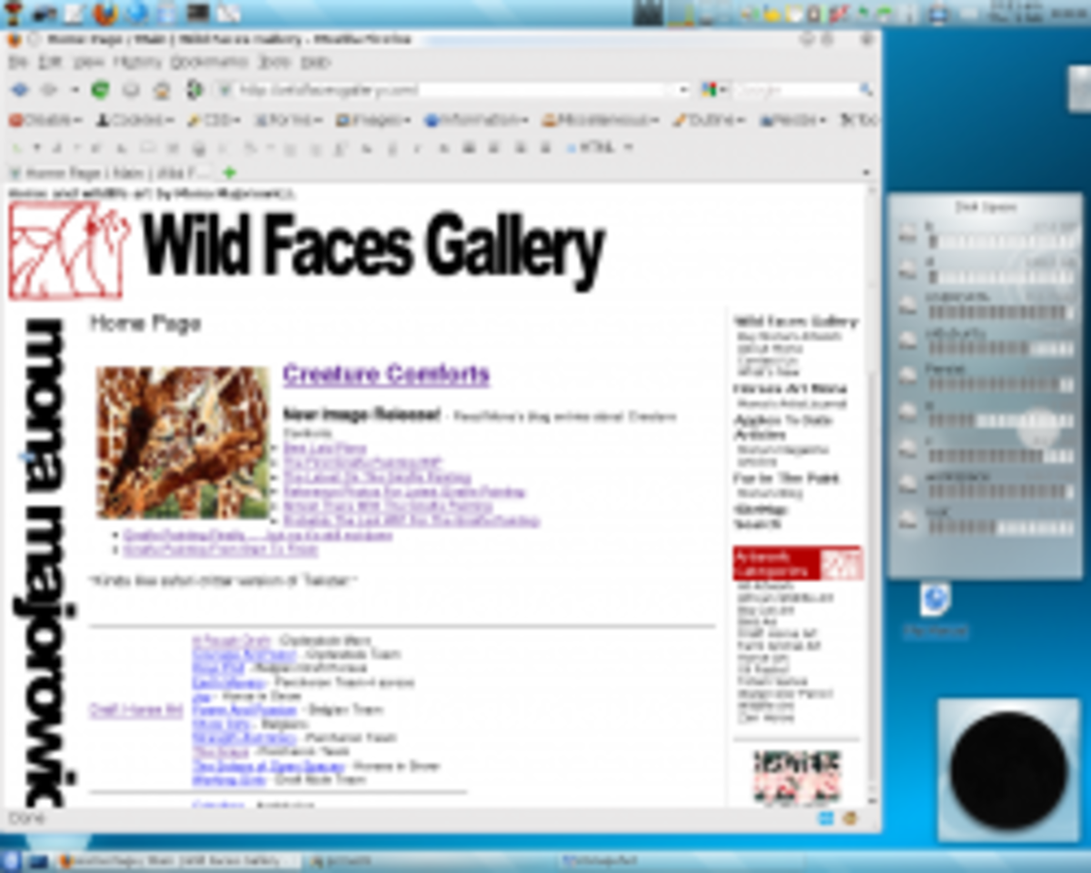 Wild Faces Gallery Website