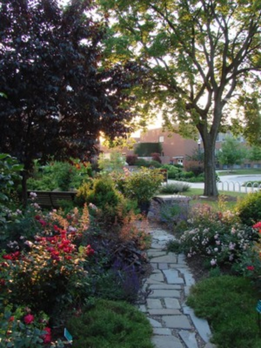 gardens-to-see-in-ohio