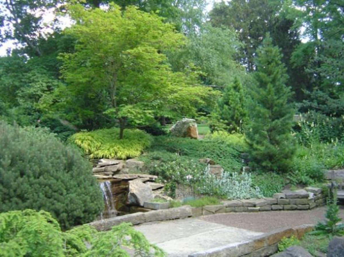Inniswood rock garden