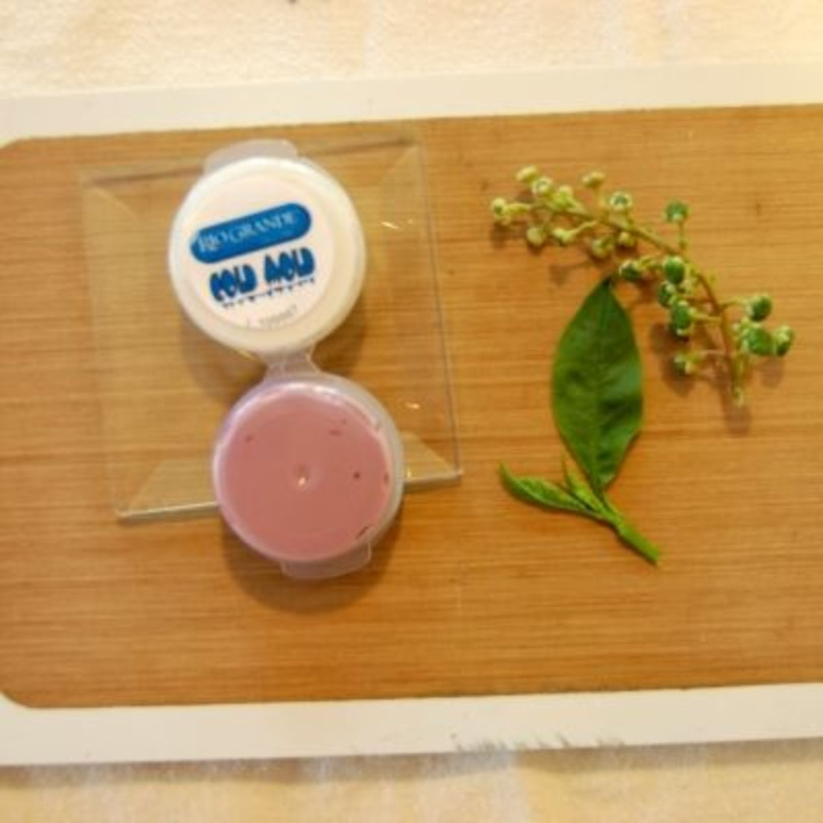 Making Molds from Nature | HubPages