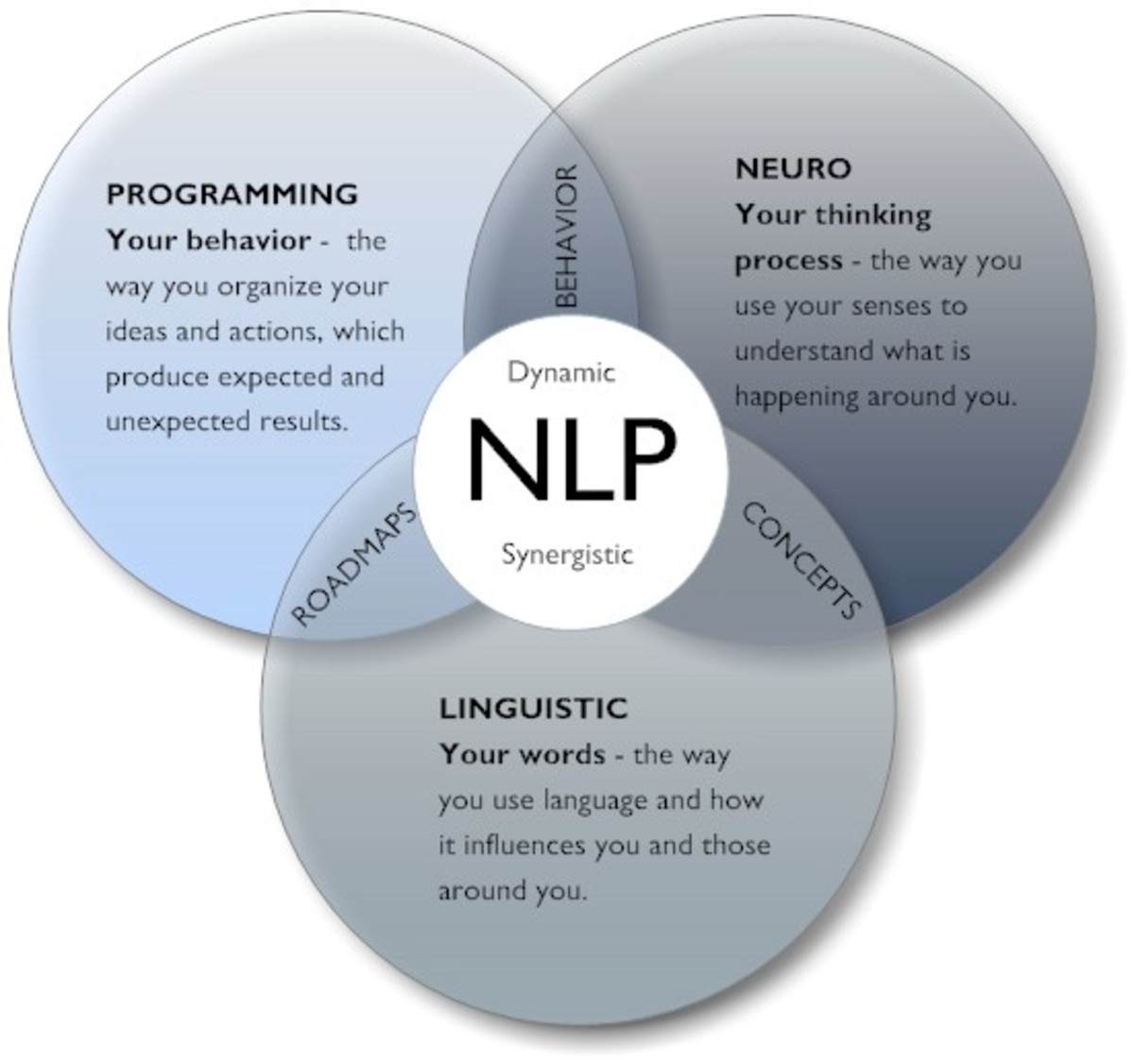 Neuro Linguistic Programming For Life Changing Results