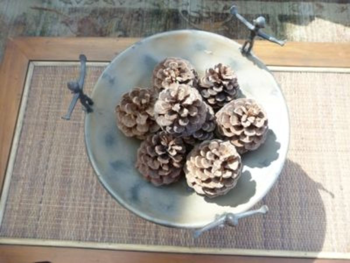 Pine cones add a rustic touch to indoors - just stack them on a bowl on a coffee table with a few drops of essential oils.