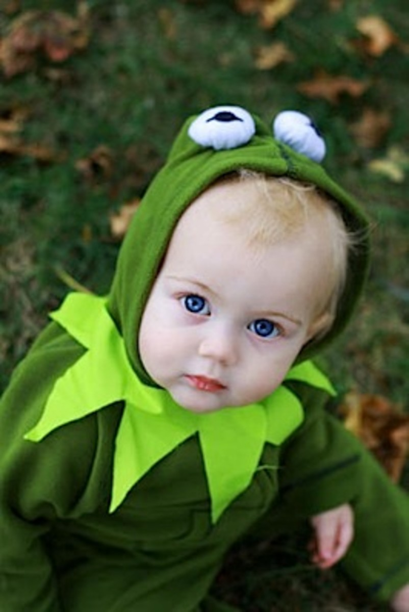 Kermit the Frog Costumes