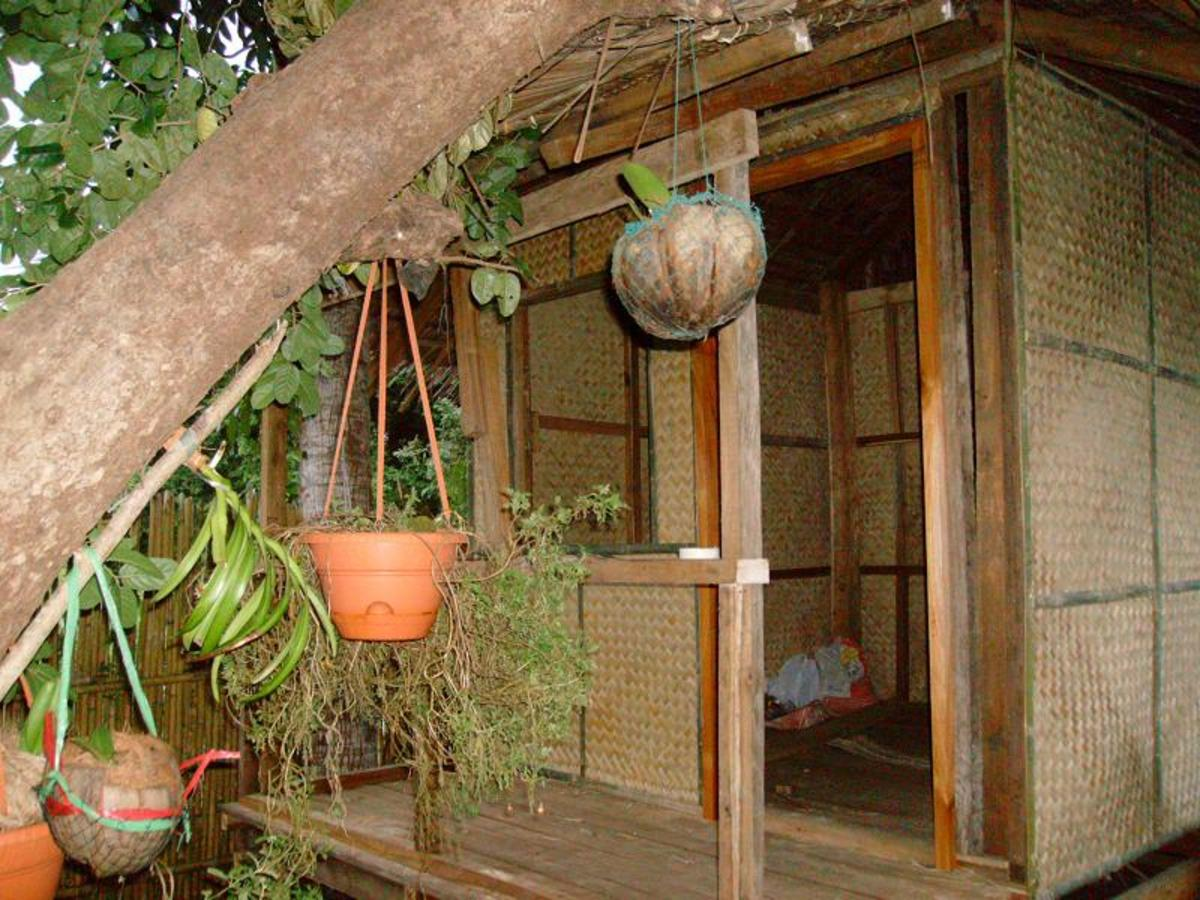 Woven coconut leaves used in this beautiful nipa hut for walls.