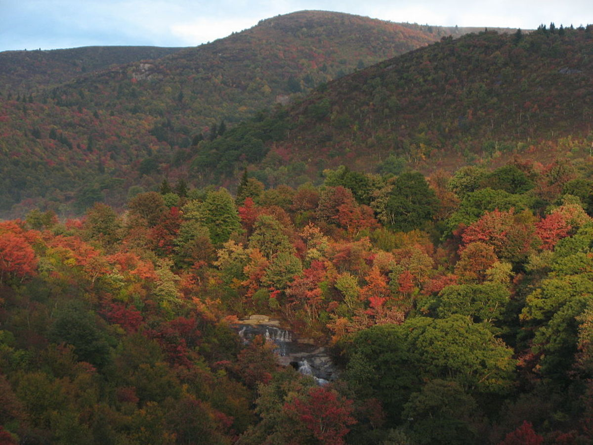 Black Balsam Knob, Graveyard Fields and Yellowstone Falls along Blue Ridge Parkway