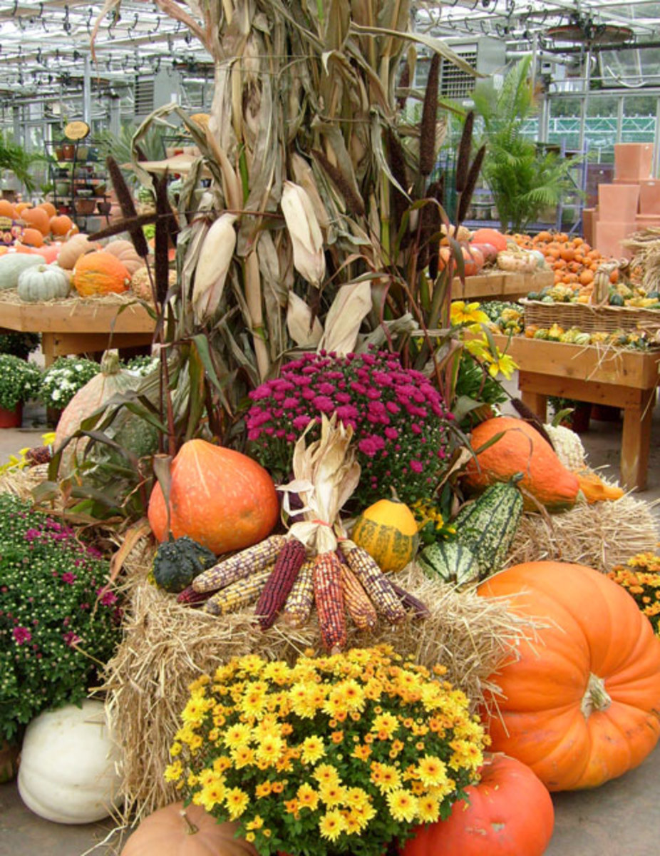Pumpkin Decorations, Designs and Art for Fall and Halloween