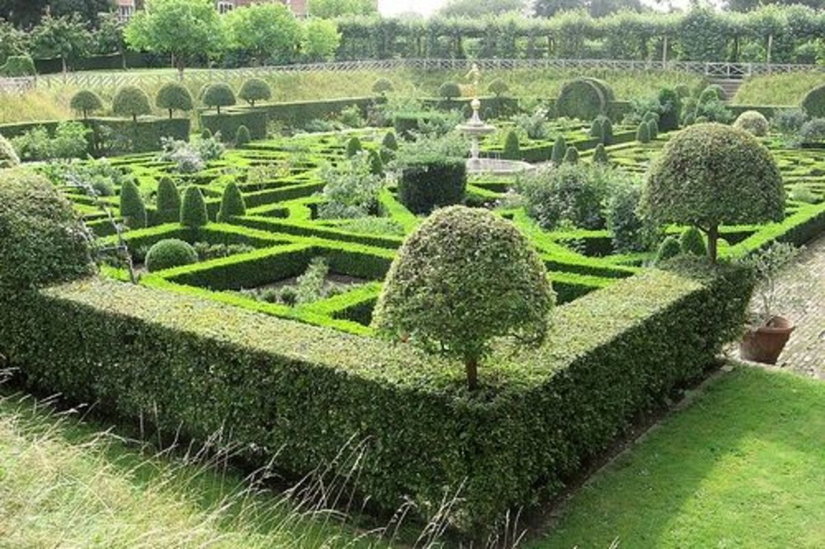 Knot and parterre vegetable and herb gardens for Parterre vegetable garden design