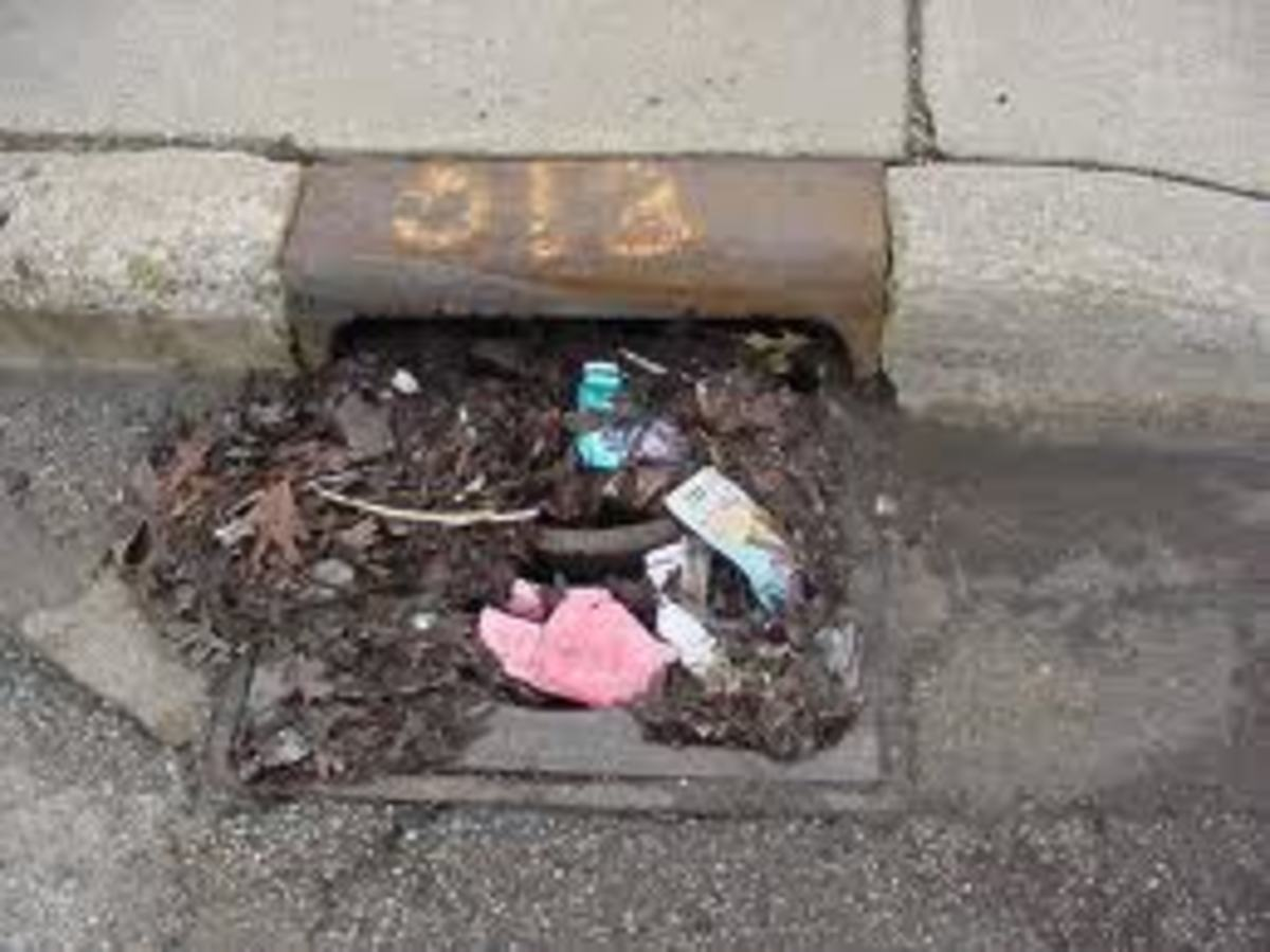 Clogged storm drain.  Yuck!