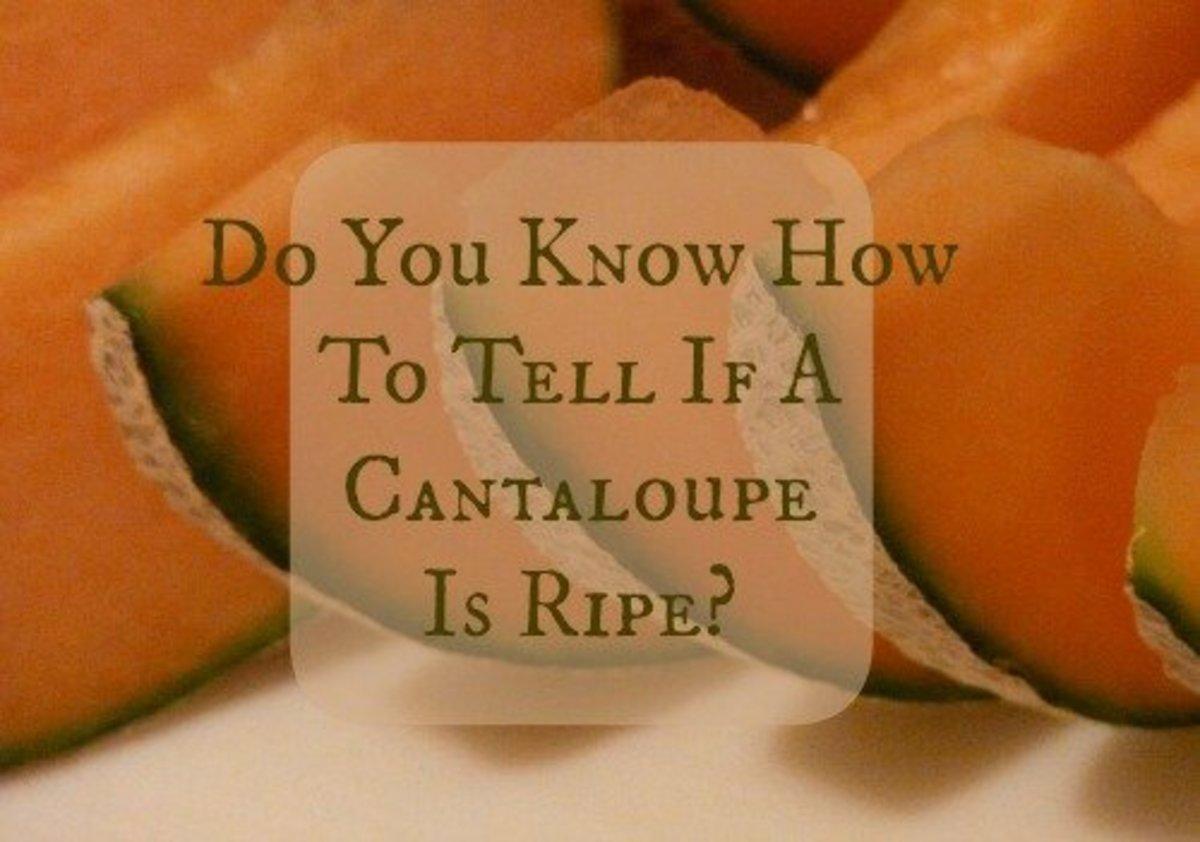 how to tell if rockmelon is ripe