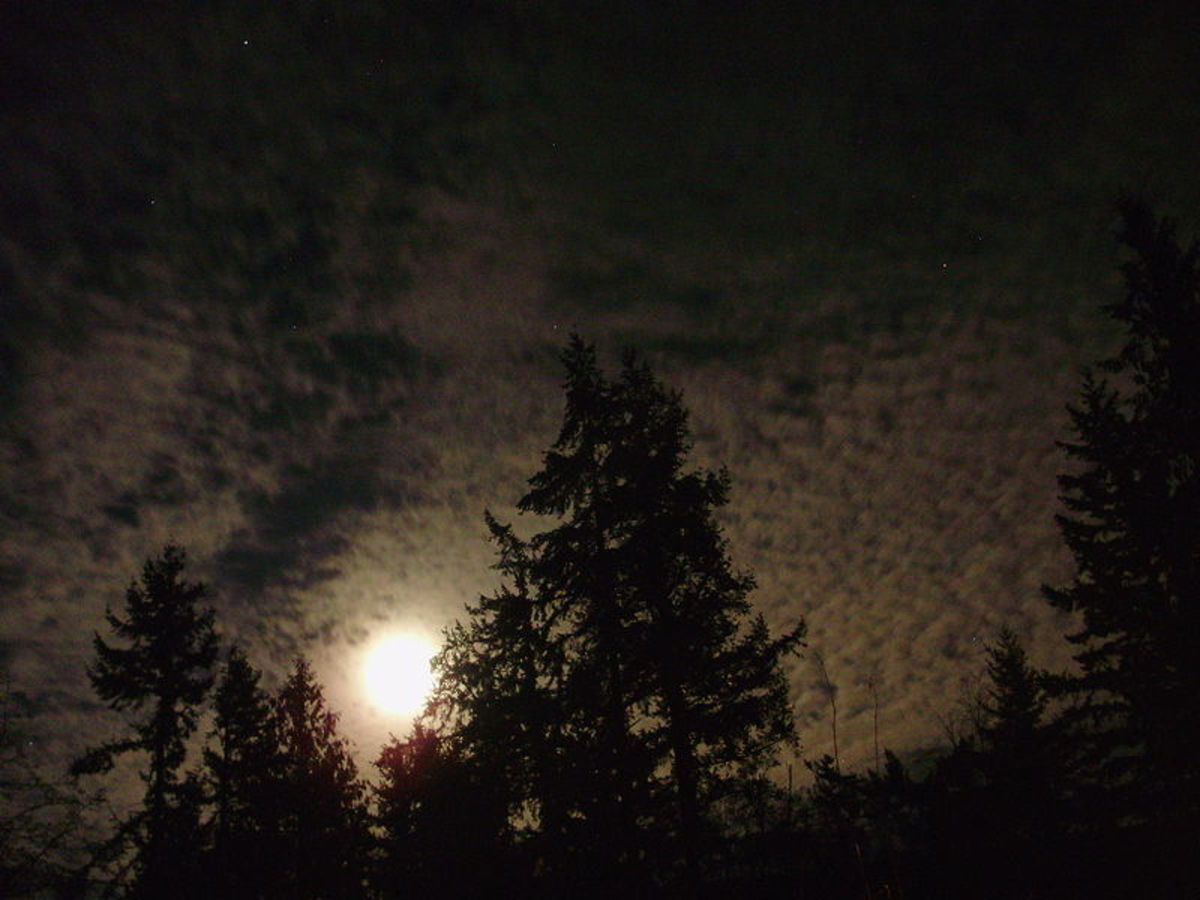 Playing Werewolf Tag during a full moon can help make seeing in the dark a little easier.