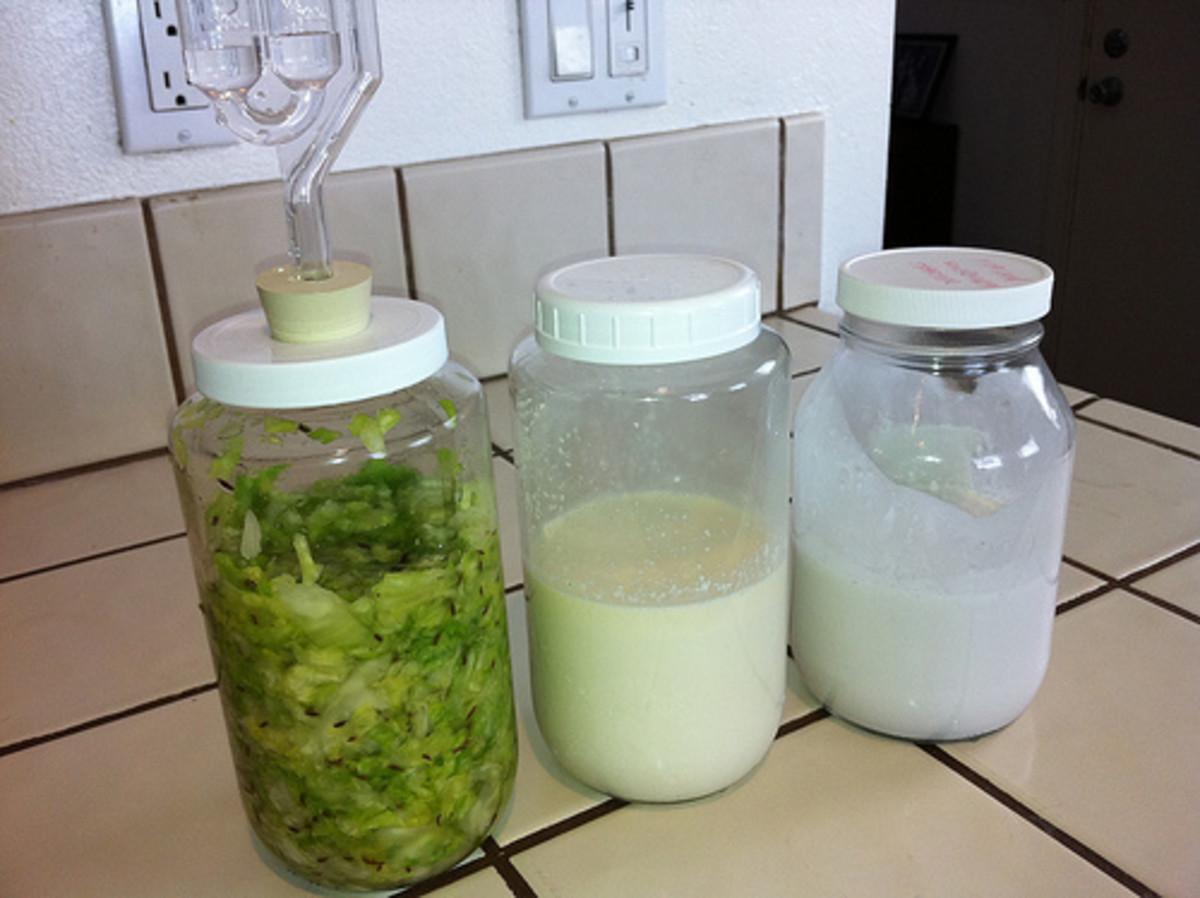 Sauerkraut, kefir and coconut milk kefir can all be made using live kefir grains.
