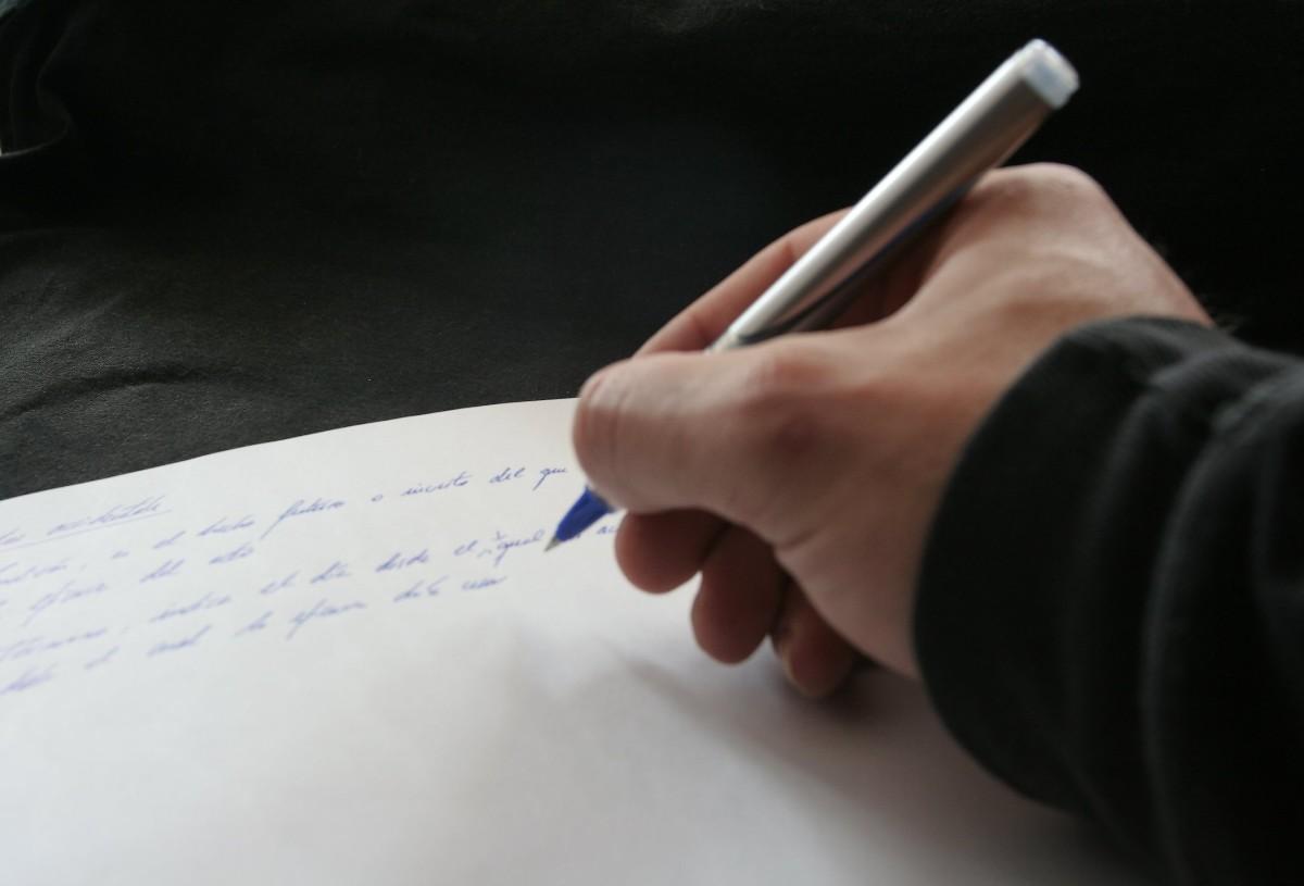 Essay Help