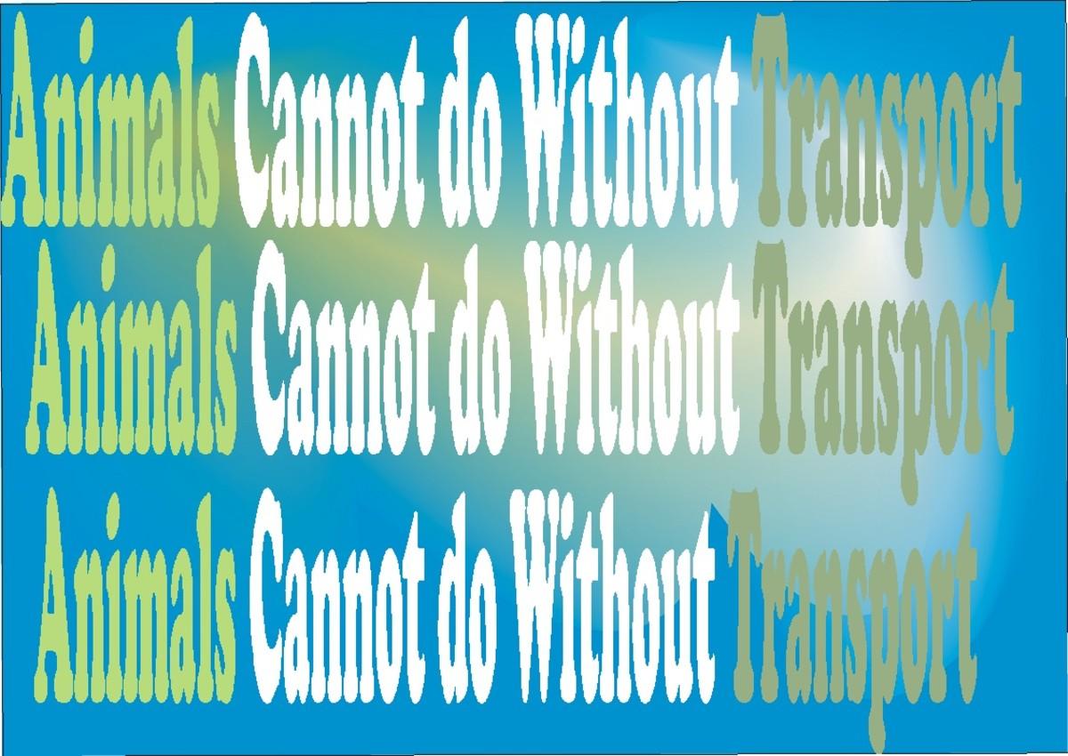 Transport in Animals