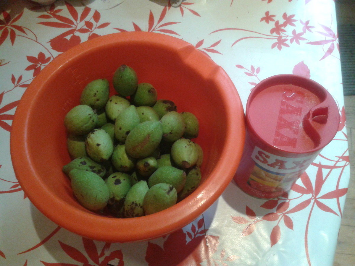 Pickled Walnuts Recipe