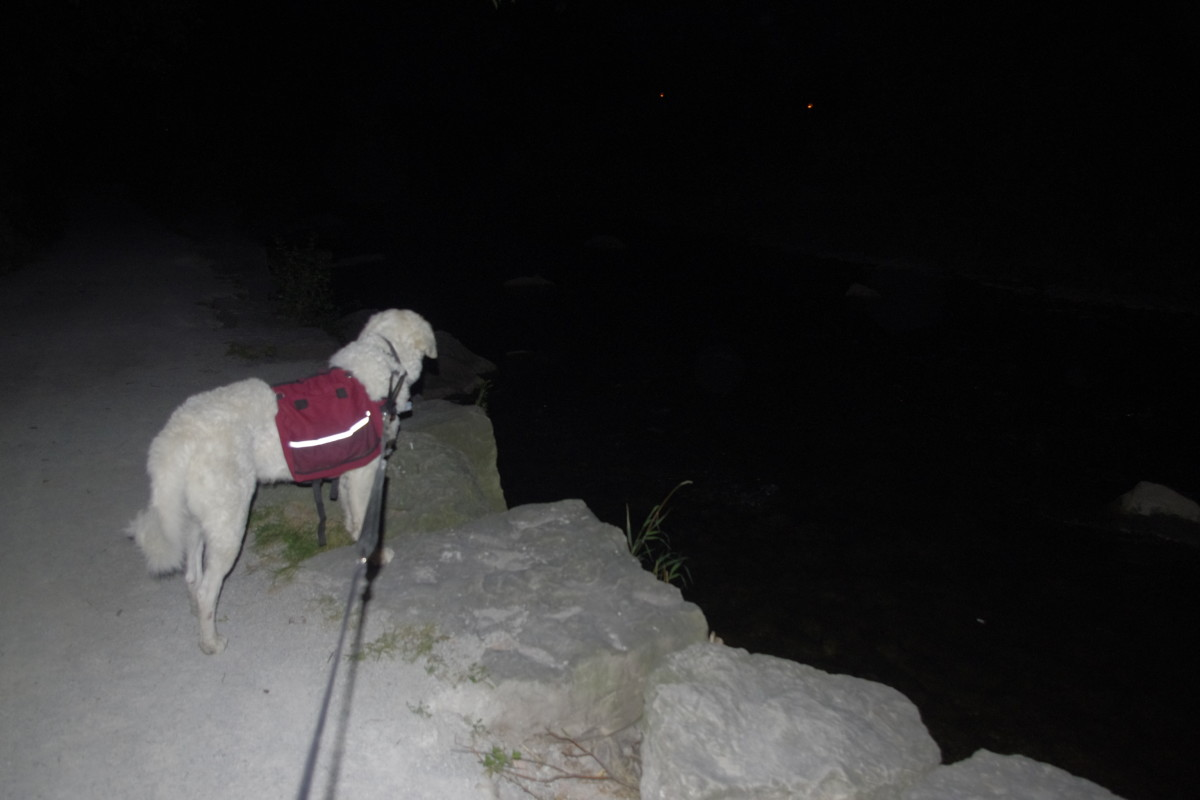 Pitch dark with only my head lamp turned on, because K2 got alarmed at something.