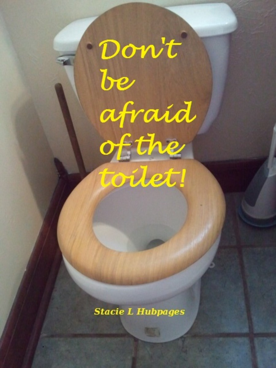 how-any-woman-can-replace-the-old-toilet-herself