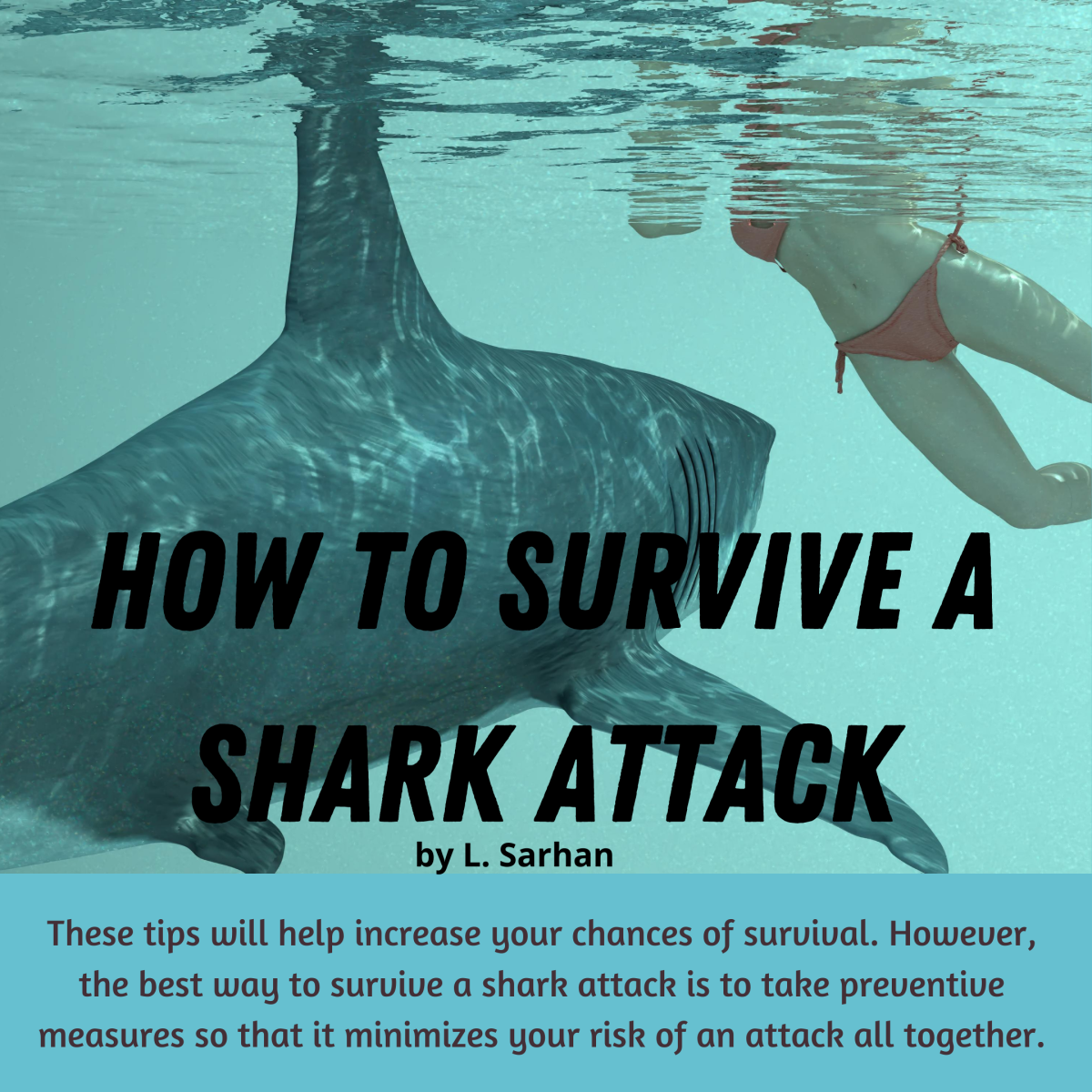 tips-to-survive-a-shark-attack