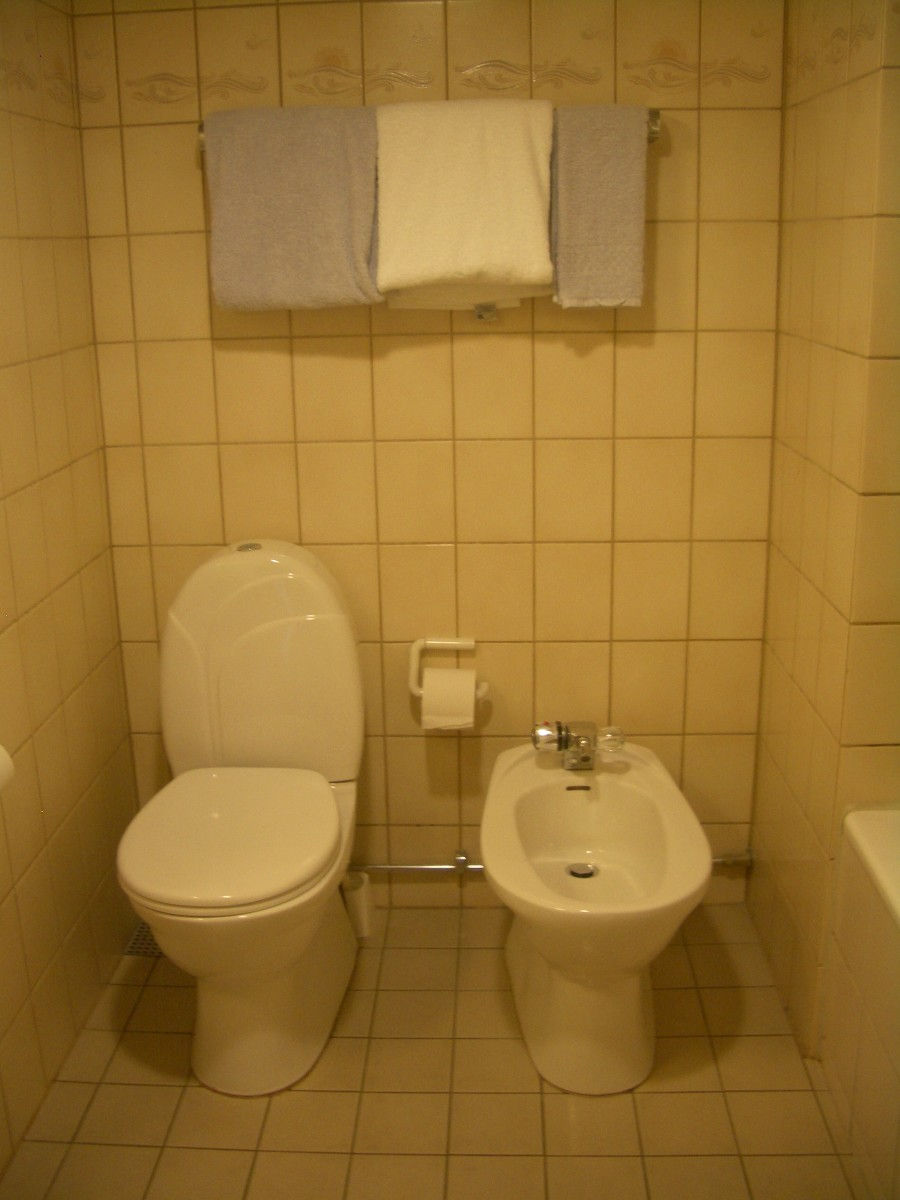 Tired of Waking Up With Stinking Fingers - Buy a Toilet Bidet