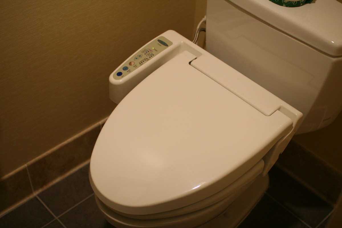 Combined toilet and bidet.