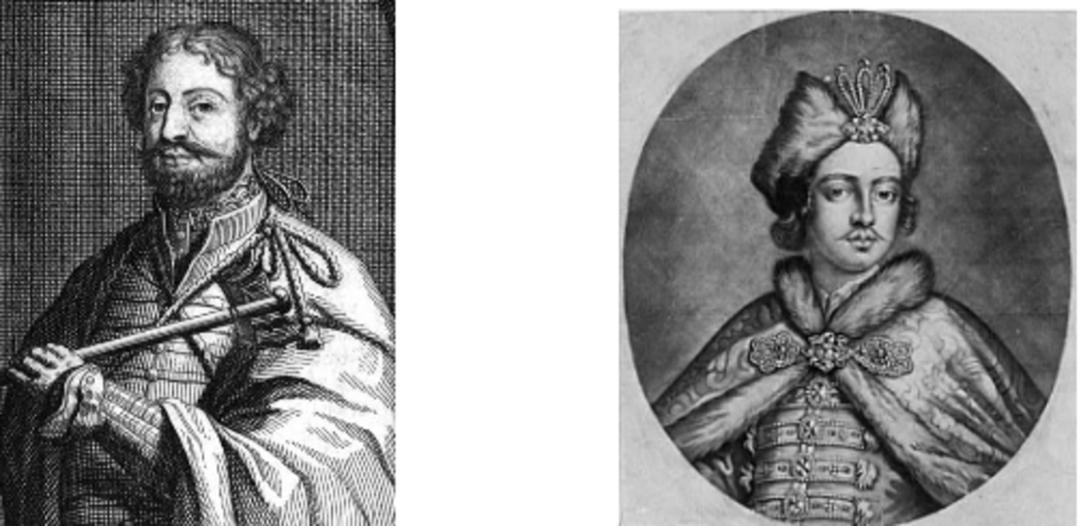 Prince Nicholas Davidson From  Wikipedia 1672 the year Peter was born  -  Peter in late teens from the Library of Congress