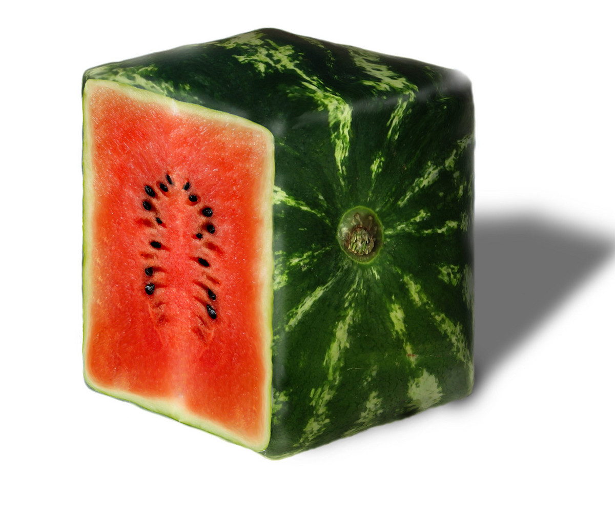 Square Watermelon: A Popular Trend in Japan