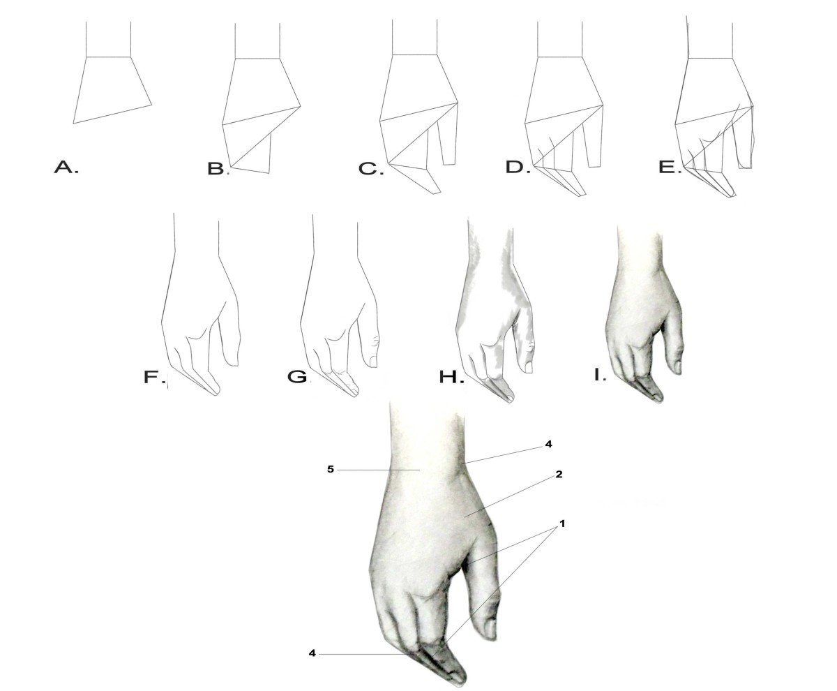 drawing-the-human-figure-the-hands
