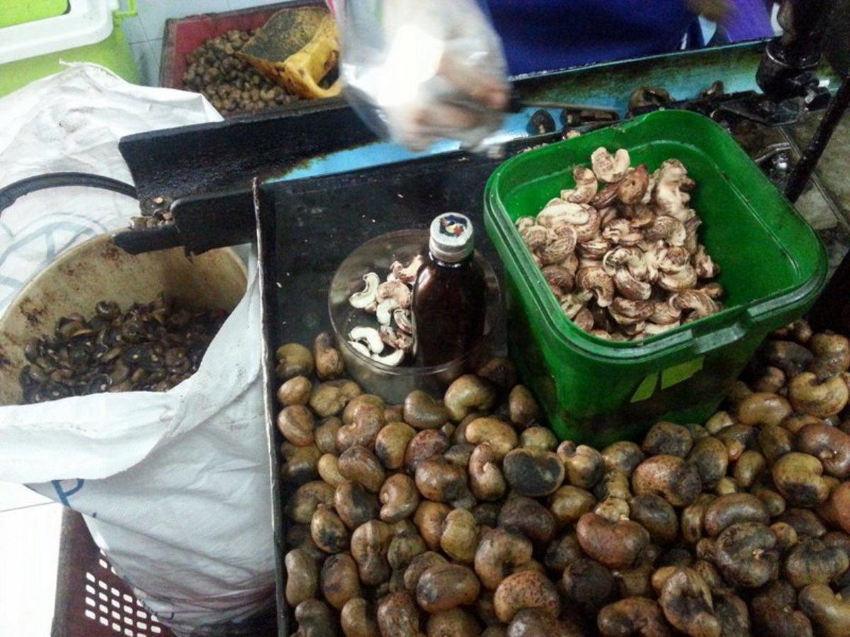 Cashew nut production at cashew nut factory in Phuket