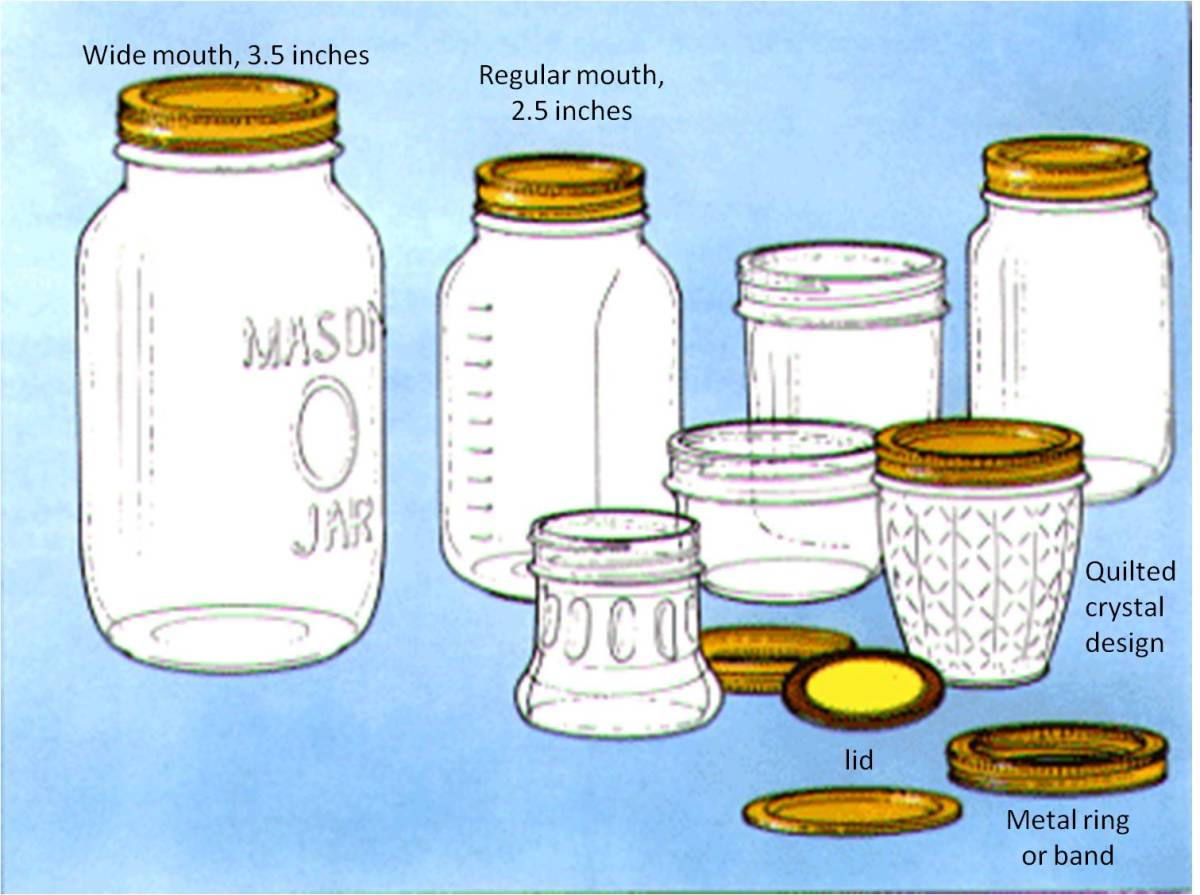 Different sizes and shapes of jars