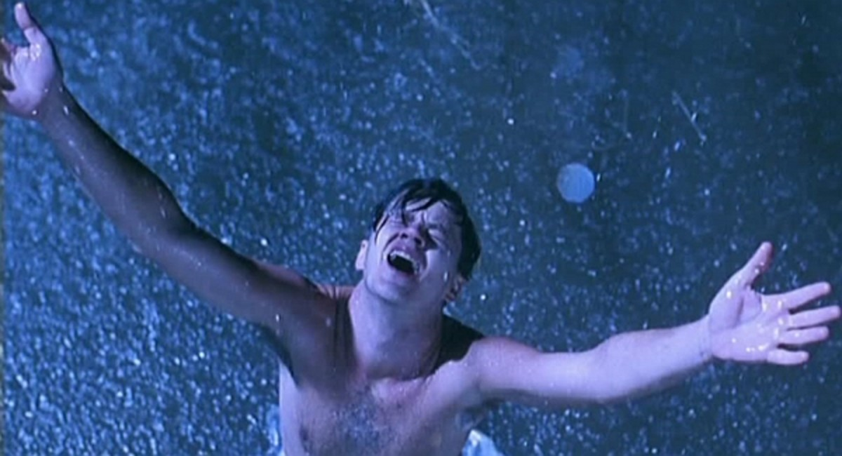 Andy strips his prison uniform in the middle of the creek and extends his arms up to the sky, liberated, and victorious.