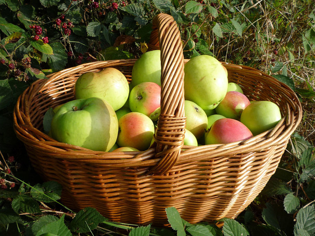 20-apple-recipes-what-to-do-with-so-many-apples